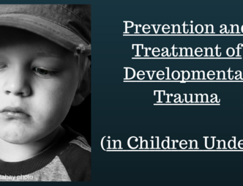 Prevention and Treatment of Developmental Trauma (in Children Under 3)