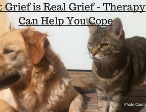 Grief and Loss Counseling-When Loss is Too Hard to Handle